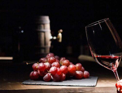 Descubre los grandes vinos de La Mancha